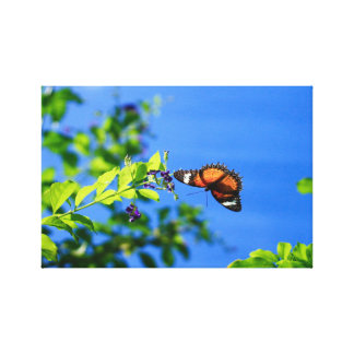 In Flight- Full Butterfly Print