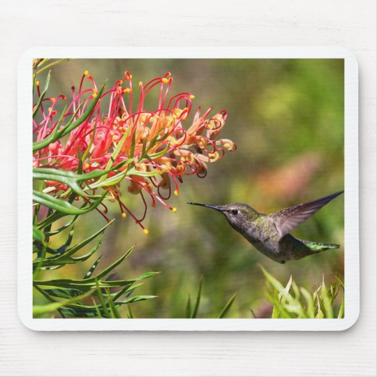In flight Hummingbird feeding Mouse Mat