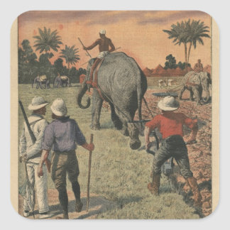 In French Congo, elephant trained to ploughing Square Sticker
