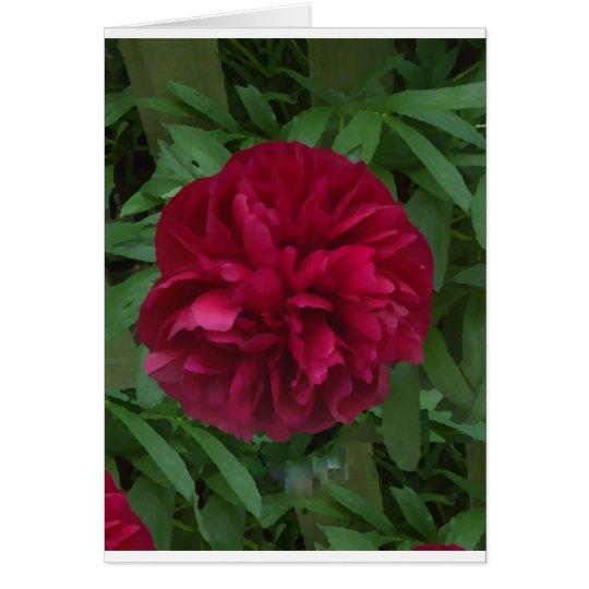 In Full Bloom Card