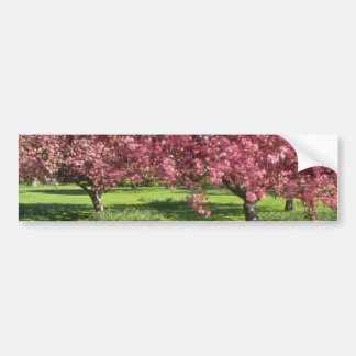 In full bloom, Niagara Falls flowers Bumper Stickers