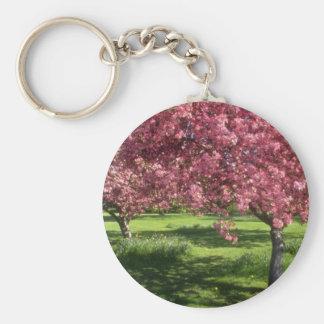 In full bloom Niagara Falls flowers Key Chain