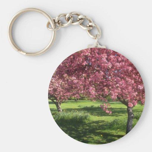 In full bloom, Niagara Falls flowers Key Chain