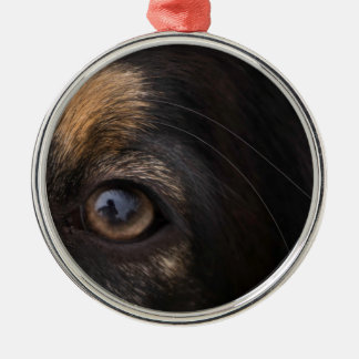In His Eyes Christmas Ornament