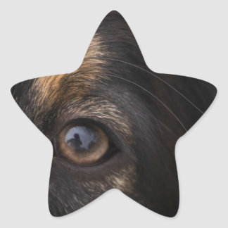 In His Eyes Star Sticker
