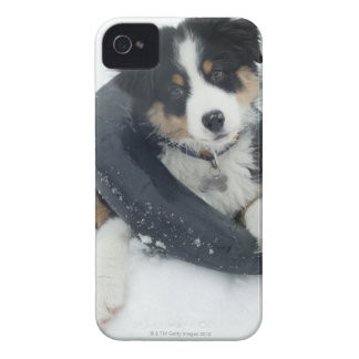 in inner tube in the snow Case-Mate iPhone 4 cases