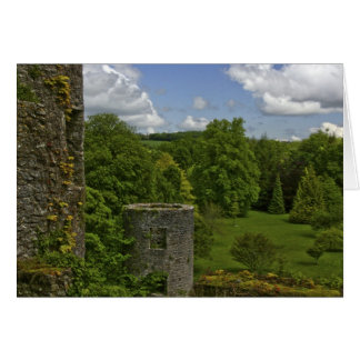 In Ireland, at Blarney Castle a stone tower in Card