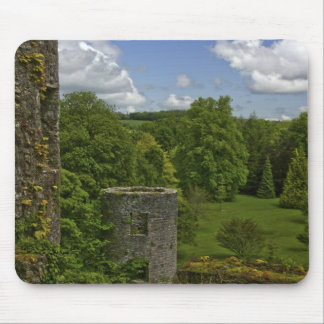 In Ireland, at Blarney Castle a stone tower in Mouse Mat