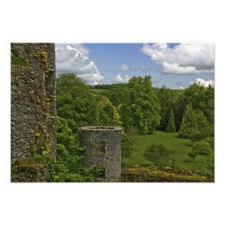 In Ireland, at Blarney Castle a stone tower in Photographic Print