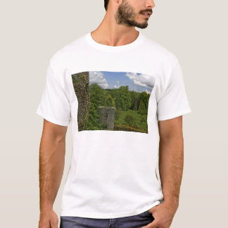 In Ireland, at Blarney Castle a stone tower in T-Shirt