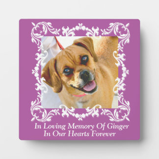 In Loving Memory Pet Memorial Photo Plaque