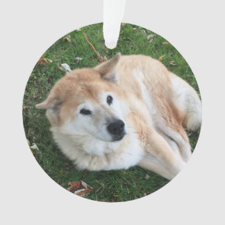 In Loving Memory Pet Photo Ornament