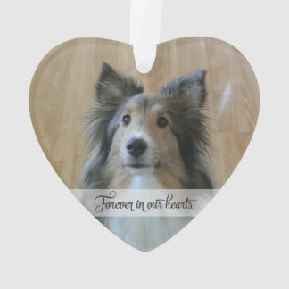 In Memory - Loss of Pet - Custom Photo/Name
