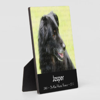 In Memory Of .. Dog Photo Memorial Tribute Plaque