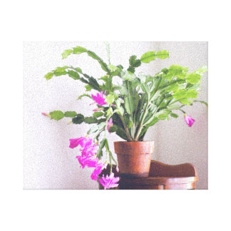 In My Garden, Embossed Pink Christmas Cactus 2 Gallery Wrapped Canvas
