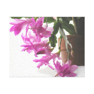 In My Garden, Embossed Pink Christmas Cactus 3 Gallery Wrapped Canvas