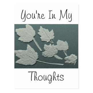 In My Thoughts Silver Maple Bas Relief Postcard