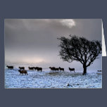 In search of food..... A winter Landscape Card
