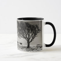 In search of food Mug