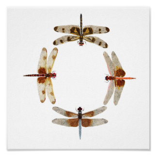 In Sync- Circle of Dragonflies Art Poster