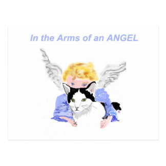 In The Arms of An Angel Postcard