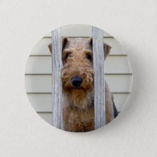 """""""In the Doghouse"""" 6 Cm Round Badge"""
