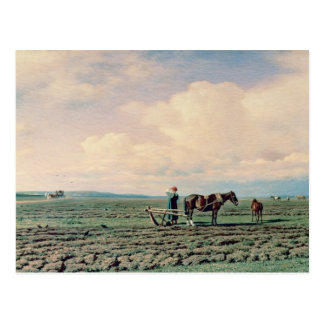 In the Field, 1872 Postcard