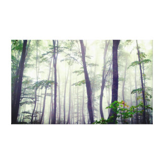 in the forest canvas print