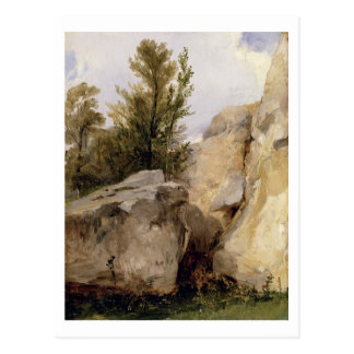 In the Forest of Fontainebleau, c.1825 (oil on can Postcard