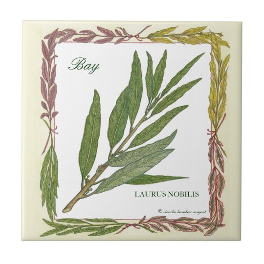 In the Garden ~ Bay Leaf Tile