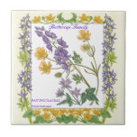 In the Garden ~ Buttercup Family  Tile