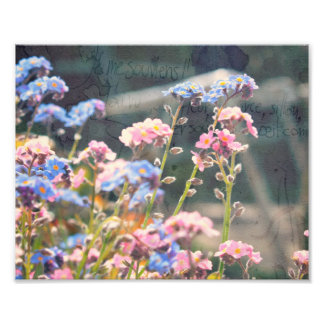 In The Garden Photo Prints.