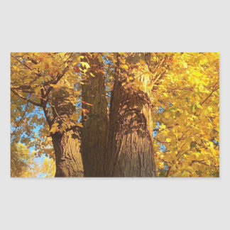 In the Glow of Golden Maple Leaves - Rectangular Sticker