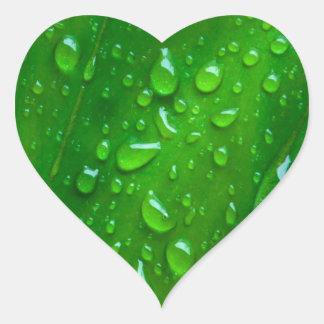 IN THE GREEN HEART STICKER
