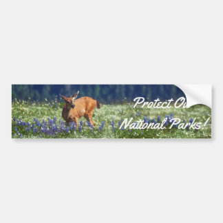 In the Meadow Bumper Sticker