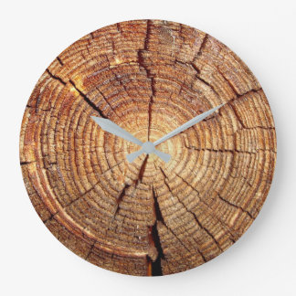 IN THE PITH OF TIME: Stump clock