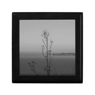 In the Weeds Small Square Gift Box