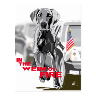 In The Weim Of Fire Post Card