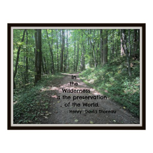 In the wilderness: quote by Henry David Thoreau Poster