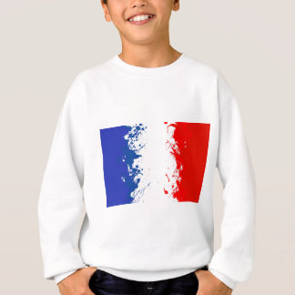 in to the sky, france sweatshirt