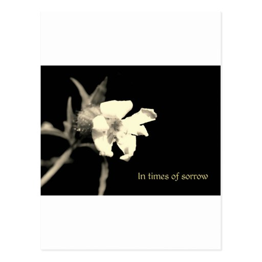 In you time of sorrow - condolences postcards