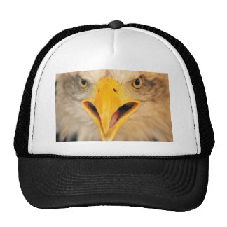 In your face mesh hats