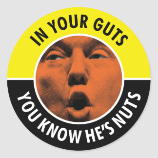In Your Guts You Know He's Nuts Trump Sticker