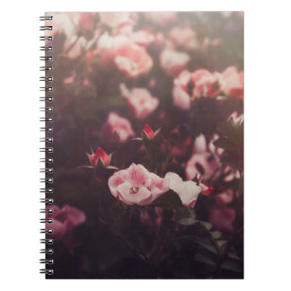 Indecision Notebook