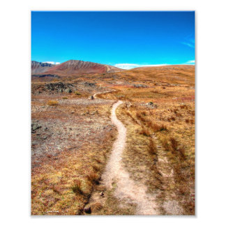 Independence Pass Hiking Trail Photo Print