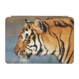 India, Bengal Tiger (Panthera Tigris) 4 iPad Mini Cover