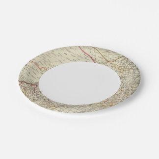 India IX Paper Plate