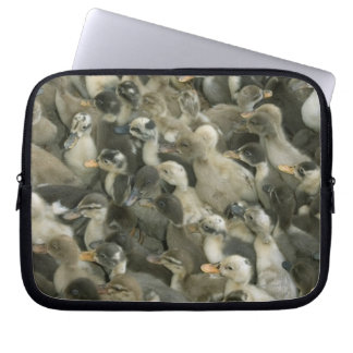 India Laptop Sleeve