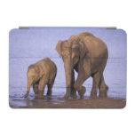 India, Nagarhole National Park. Asian elephant iPad Mini Cover