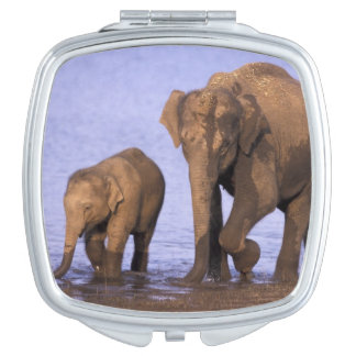 India, Nagarhole National Park. Asian elephant Mirrors For Makeup